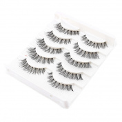 Raylans 5 Pairs Handmade Natural Makeup Long False Eyelashes Eye Lashes