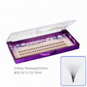 Natural Professional Plant false eyelashes 8/9/10/11/12/13mm 10 Root Thickness 0.07mm C Curl 3D Profession Individual Eyelashes Extension Soft Black Fake False Eye Lashes beauty tools