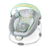 Ingenuity Pen 60389 Soothe and Delight Bouncer - Savvy Safari