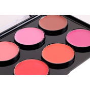 only you 10 Colours Warm Matte Eyeshadow Palette Concealer Foundation Cosmetic Makeup Kit/Blush / Lipstick / Eye Shadow