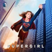 Supergirl: Seasons 1-2 [Region 2]