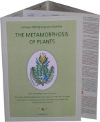 Metamorphosis of Plants