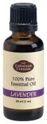 Lavender French 40/42 Pure Essential Oil Therapeutic Grade- 30ml