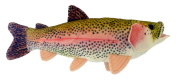 Adore 43cm Sierra Rainbow Trout Plush Stuffed Animal Walltoy Wall Mount Stuffed