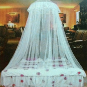 Gemini_mall® Light Blue Lace Bed Canopy Mosquito Net Dome Fly Insect Net Protection