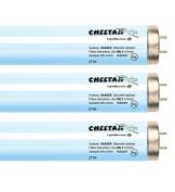 Cheetah Ultra Extreme F71 100W-120W 9.5% Bi-pin Tanning Lamp