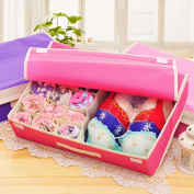 Collapsible Organiser Storage Boxes Closet Organisers with Lid for Underwear, Bras, Socks, Ties, 8 Small Slots + 1 Large Slot