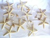 Natural Starfish and Shell 2.7m Garland