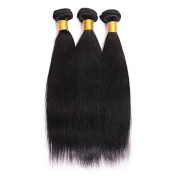 BeautyGirl Hair Brazilian Straight Virgin Hair Extensions Good Quality 3Pcs Lot Straight Remy Hair Weave 100% Human Hair Extensions
