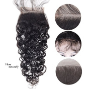 Auspiciouswig Curly Brazilian Human Hair Lace Closure 4x 4 Free Part with Baby Hair Natural Colour