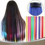 Superwigy Clip on in Hair Extensions Hairpieces Long Straight 12 Multiple Colours for Choose Party Highlight 12Pcs/Set