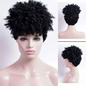 5I Short Kinky Curly Hair Wigs for Black Women Synthetic Heat Resistant Natural Looking Afro American Wigs (Jet Black) Z058