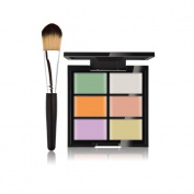 JasCherry Pro 1 Pcs Make Up Brush #1 + 6 Colours Cream Concealer Camouflage Makeup Palette Contouring Kit for Salon and Daily Use