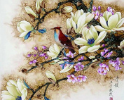DIY Oil Painting for Adults Kids Paint By Number Kit Digital Oil Painting Bird and Flowers 41cm X 50cm