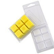 Premium Wax Melt Clamshells 50 Pack