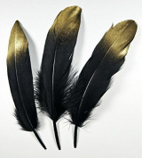 ZJONES Goose Feather 50pcs Painting Feather 13-18cm For Craft