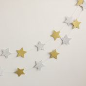 Paper Garland, MerryNine 2 Pack 6.1m Twinkle Star Garland Sparkling Gold Star Banner for Baby Shower, Birthday, Nursery Party Decor