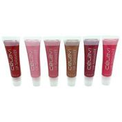 Celavi High Shine Moisturising Lip Shimmer 6 Colour Set