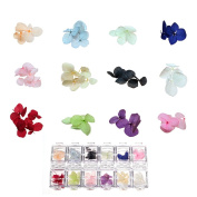 BMC By Bundle Monster 12 Colour Real Natural Dried Nail Art Flowers