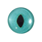 25mm Single Turquoise Cat Glass Eye for Taxidermy Sculptures or Jewellery Making Pendants Crafts Art Doll Wire Wrapping DIY Flatback Cabochon