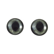 16mm Glass Realistic Dark Grey Cat Eyes Animal Pair Realistic Taxidermy Sculptures or Jewellery Making Crafts Set of 2