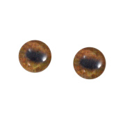 10mm Glass Moose Eyes Animal Pair Realistic Taxidermy Sculptures or Jewellery Making Crafts Set of 2