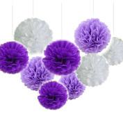 Fascola 18pcs Tissue Hanging Paper Pom-poms, Flower Ball Wedding Party Outdoor Decoration Premium Tissue Paper Pom Pom Flowers Craft Kit