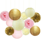 Fascola 12 pcs Mixed Pink Gold White Party Decor Kit Paper lantern Paper Star Garland Tissue Pom Poms Hanging Flower Ball for Wedding,Birthday,Baby,Bridal Shower,Room decor & Themed Party Decoration