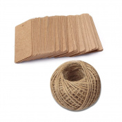 100 PCS Kraft Paper Gift Tags, Rectangle Wedding Favour Tags, Luggage Tag, Craft Hang Tags Bonbonniere Favour Gift Tags with 30m Jute Twine