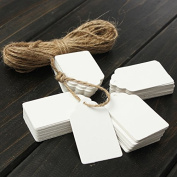 100pcs Scallop Kraft Paper Label Party Wedding Gift Name Cards Tags Hand Draw Name Card With Hemp Ropes