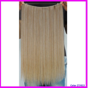 Flip in Synthetic Hair Extension Hairpiece 50cm Straight Halo Secret Hair Extensions 50g