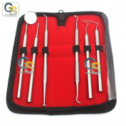 G.S DENTAL DENTIST PICK TOOL KIT 6 PIECE BEST QUALITY