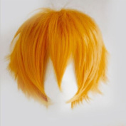 Unisex Sexy Oblique Bangs Full Wig Short Straight Fluffy for Anime Cosplay Costume Party