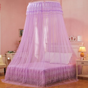 Mosquito Net Bed Canopy Curtain Round Lace Ruffle Hung Dome Netting Tent For All Size Bed ( Colour : Purple , Size : 1.5 m