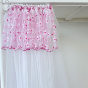 Dusty Dormitories Lace Curtains Mosquito Nets