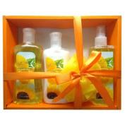 Sunflower Lemon Kiss Shower Gift Set 4pc