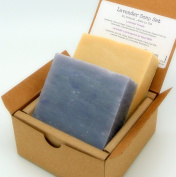 Lavender Soap Gift Set (2 Full Size Bars) - Lavender, Lavender Lemongrass Milk Castile - Handmade in USA - All Natural / Organic Ingredients