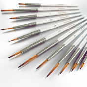 Detail Paint Brush Set - 12 Professional Quality Miniature Brushes are perfect for painting with Acrylic, Watercolour, Oil, and Gouache.