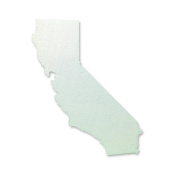CA Mission Precision Cut States Styrofoam State Projects