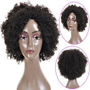 Longqi Hair Natural Short Synthetic Kinky Curly Wig for African American Women, Cosplay Party Wigs