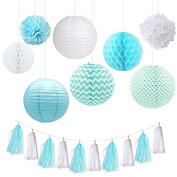 Fascola 18 Pcs White Baby Hanging Paper Lantern Paper Honeycomb Ball Pom Pom Flower Ball Tassel Garland for Wedding Birthday Kids Party Decor Set