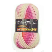 Celine lin One Skein Colourful Thick Wool Hand knitting Yarn 100g,Multi-colored8809