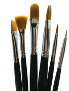 Rigger Art Professional Grade Painting Brush Set - 6 Soft Precision Paintbrushes - Watercolour Paint Brushes (for Acrylic, Oil, Face & Craft) Short Handle - Zippered Case Art Supplies