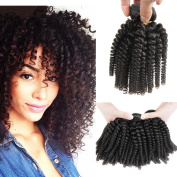 AISI HAIR Brazilian Human Hair Extensions Aunty Funmi Hair Bouncy Curls Afro Curly Tight Curl