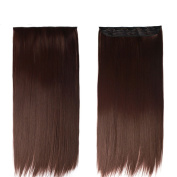 Nefertiti Hair 60cm Straight 3/4 Full Head Synthetic Hair Extensions Clip On/in Hairpieces 5 Clips