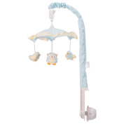 Baby's First Musical Mobile - Owl Swing - Model #