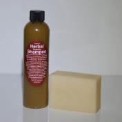 Carley's Herbal Soapless Shampoo