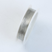 Silver Colour Wire 30 Gauge,Thickness 0.25MM WS-101-30G