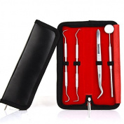 Dental Hygiene Kit,Dentist Tool Stainless Steel Tartar Remover Dental Pick Personal Oral Hygiene Set with Box