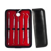 Dental Hygiene Kit,Dentist Tool Stainless Steel Tartar Remover Dental Pick Personal Oral Hygiene Set 5pcs